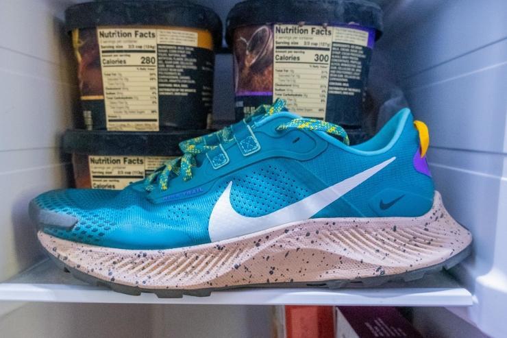 Nike-Pegasus-Trail-3-Freezer.jpg