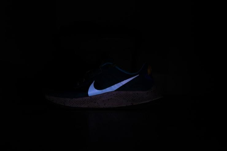 Nike-Pegasus-Trail-3-Reflection.jpg