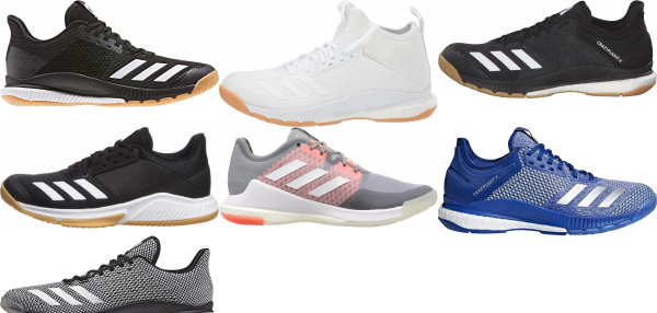 buy adidas crazyflight volleyball shoes for men and women