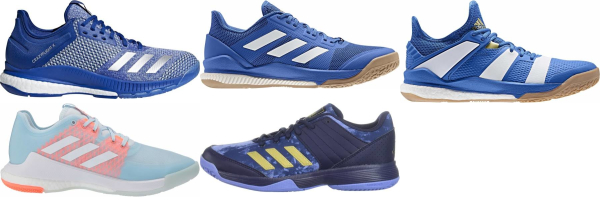 buy blue adidas volleyball shoes for men and women