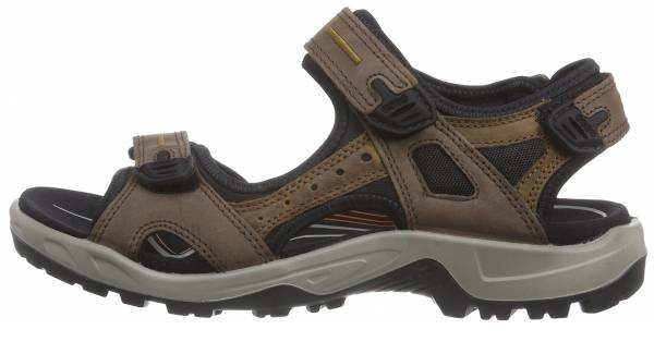 buy ecco hiking sandals for men and women