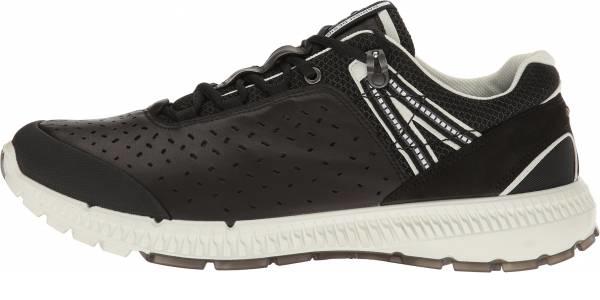 buy ecco trail walking shoes for men and women