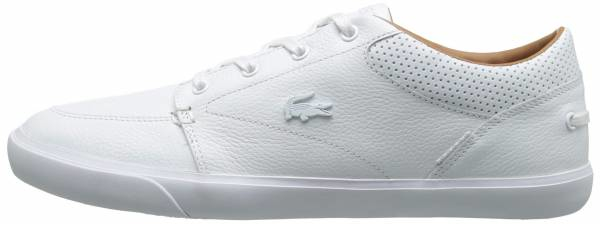 buy green lacoste sneakers for men and women