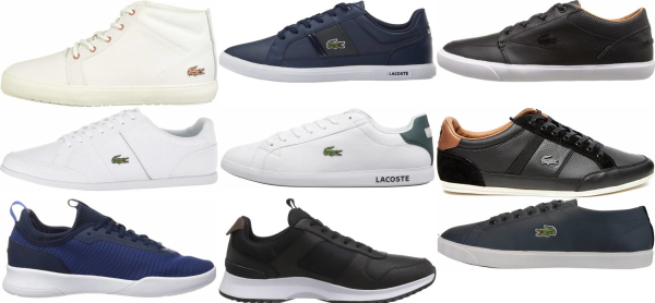 buy lacoste casual sneakers for men and women