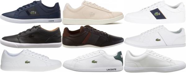 buy lacoste low top sneakers for men and women