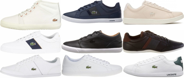 buy lacoste sneakers for men and women