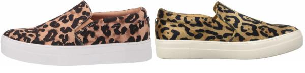 buy steve madden leopard sneakers for men and women