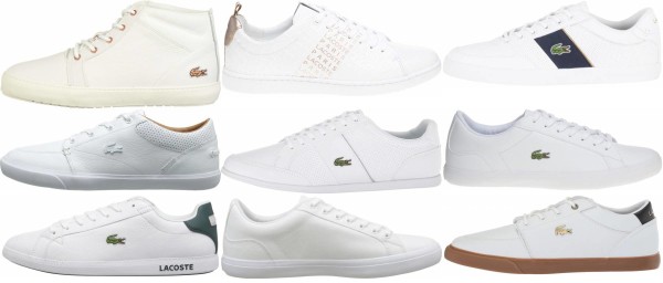 buy white lacoste sneakers for men and women