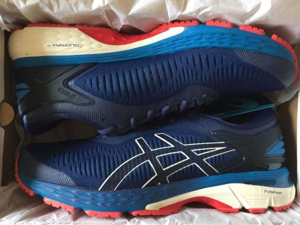 11 Reasons to NOT to Buy Asics Gel Kayano 25 (Mar 2019)  99e042d0bc4a