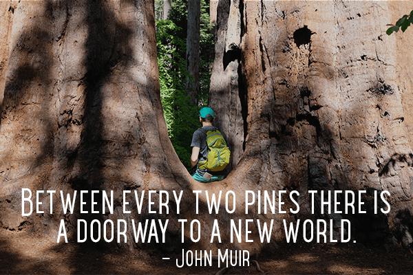1-John-Muir-Quote