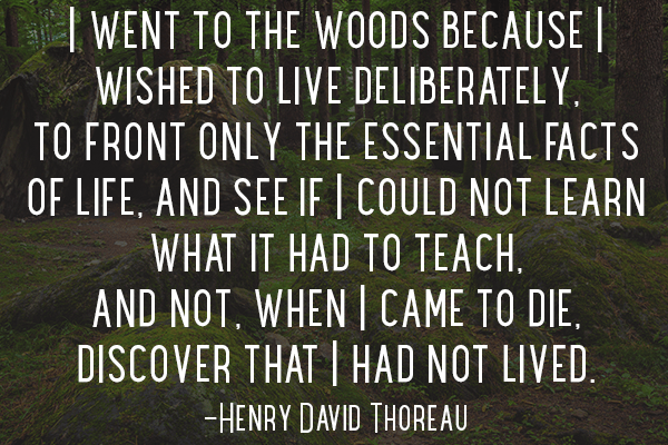 49-Henry-David-Thoreau-Quote