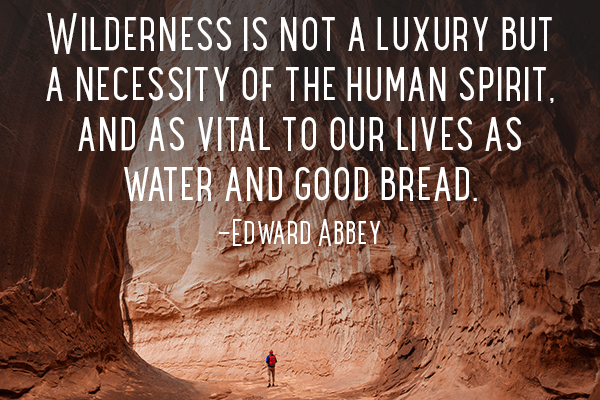 75-Edward-Abbey-Quote
