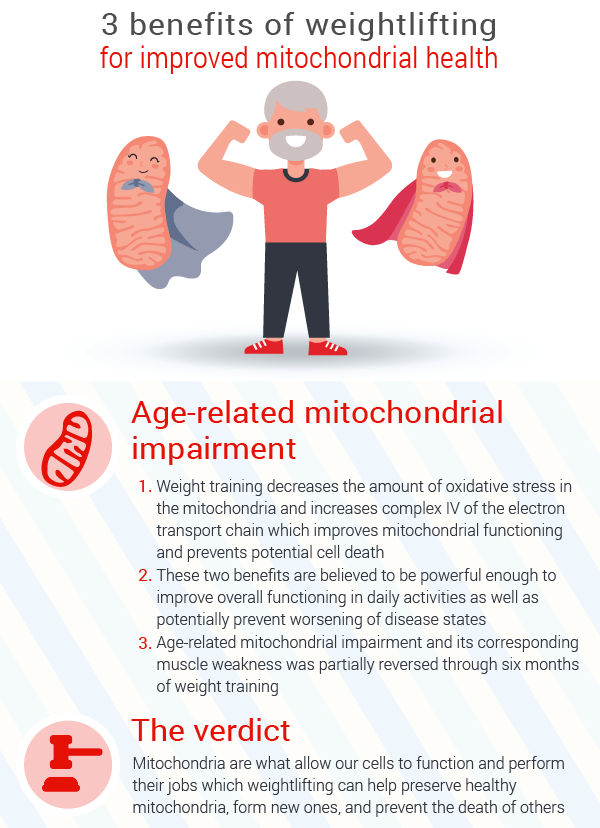 benefits-for-age-related-mitochondrial-impairment-in-seniors