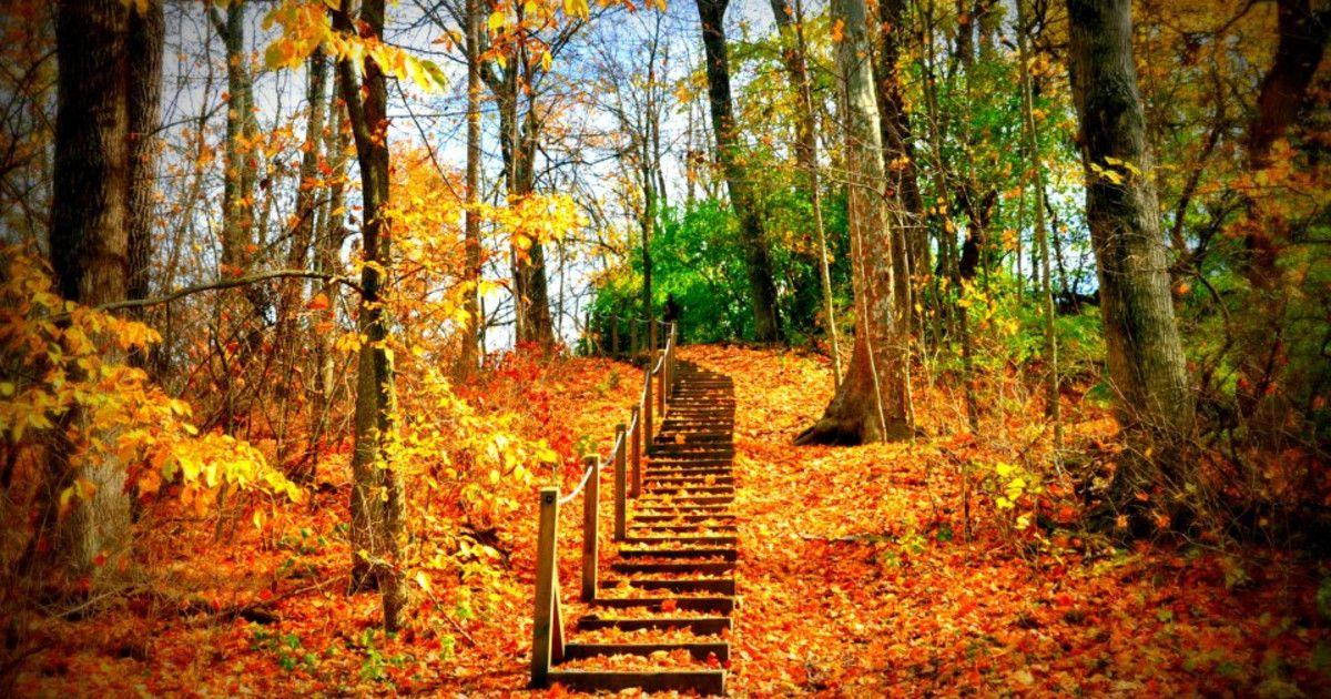 Dayton-Hikes