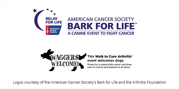 Bark for Life and Wagger's Welcome