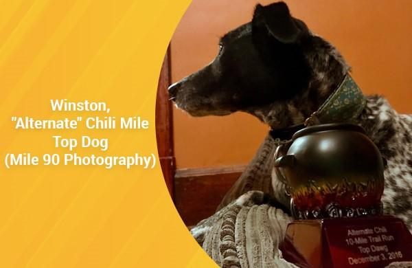 Alternate Chili Mile Top Dog (by Mile 90 Photography)