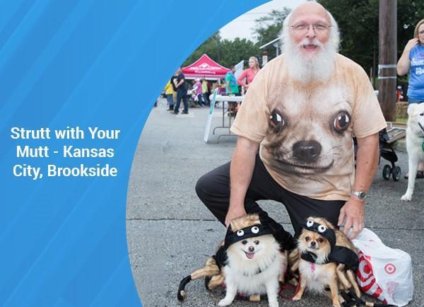 Strutt with your mutt - Kansas City, Brookside