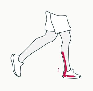 Low heel drop muscle activation