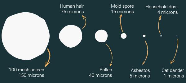 Fiber diameter comparison