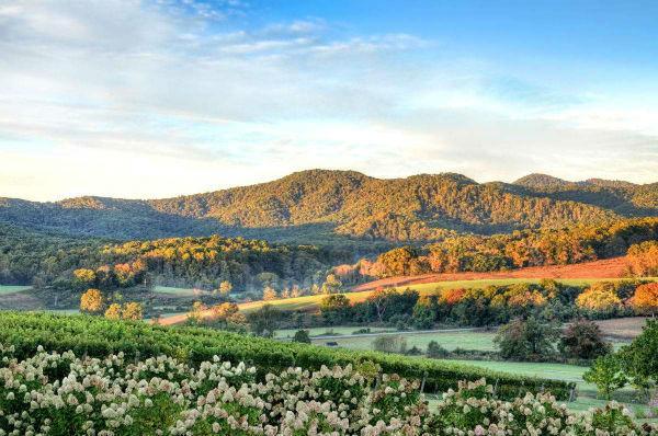 Charlottesville Virginia 1