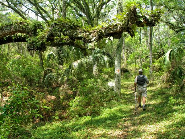 Florida-Hiking