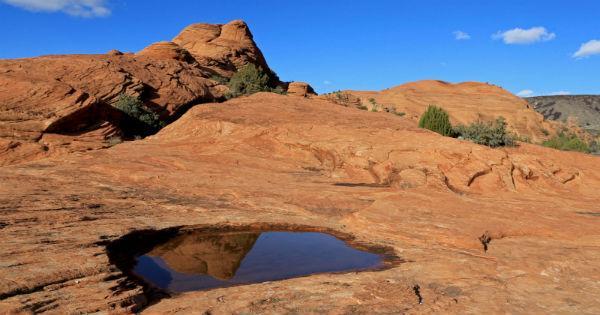 Petrified-Dunes-Utah
